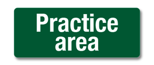 HGHM021 Practive area